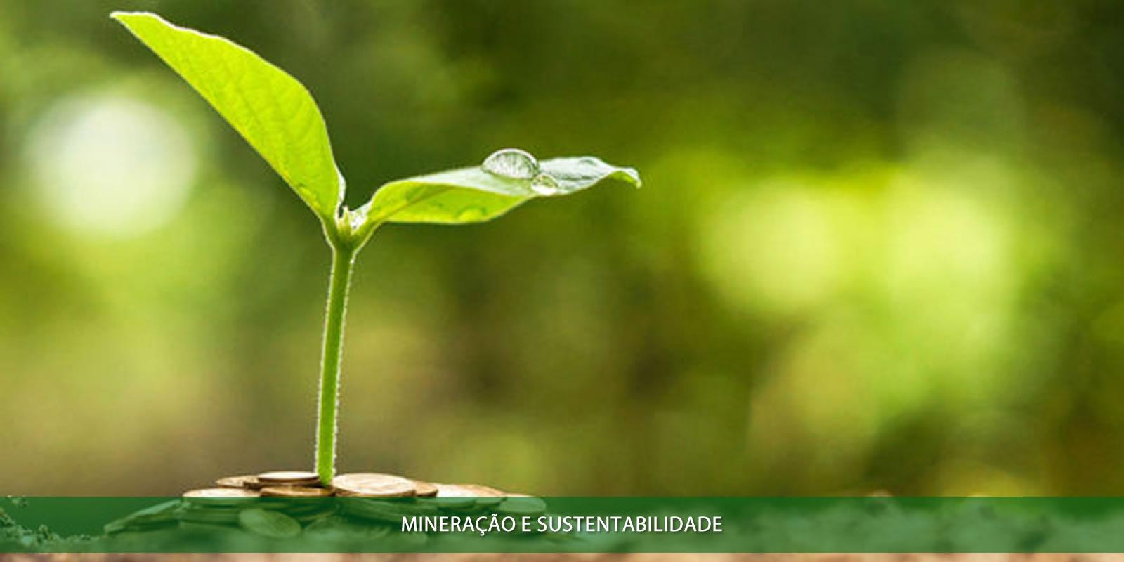 Mineração e sustentabilidade
